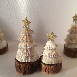 Petits sapins en coquillages